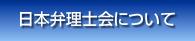 日本弁理士会について
